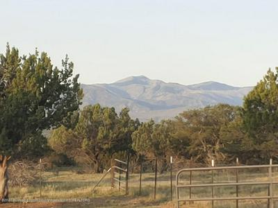 142 GRAY RD, Capitan, NM 88316 - Photo 1