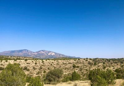 TRACT 12 SOUTH COLE TRACTS, Arabela, NM 88351 - Photo 2