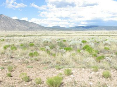 363 LONE WOLF TRAIL, Carrizozo, NM 88301 - Photo 1