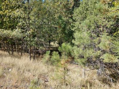 L32 SAWMILL CANYON ROAD, Alto, NM 88312 - Photo 1