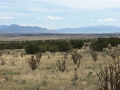 LT. 227 LT 227 RANCH VIEW LOOP, Ancho, NM 88301 - Photo 1