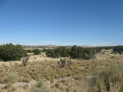 56 RANCH VIEW LOOP, Ancho, NM 88301 - Photo 2
