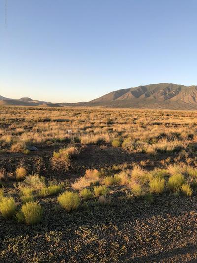 220 INDIGO LOOP, Carrizozo, NM 88301 - Photo 2
