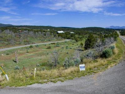 4 WOLF CREEK ROAD, Nogal, NM 88341 - Photo 2