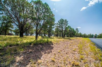 LOT 38 EAGLE RIDGE ROAD, Alto, NM 88312 - Photo 2
