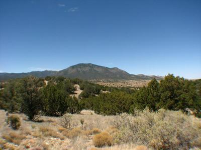L9 LONGHORN LOOP #I, Carrizozo, NM 88301 - Photo 1