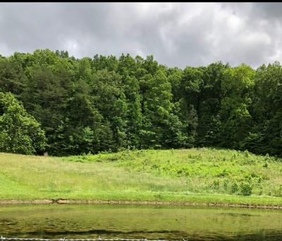 4.95 ACRES NW NO PONE VALLEY ROAD, Georgetown, TN 37336 - Photo 1