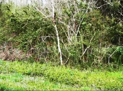 TBD SMYRNA HEIGHTS DRIVE, Evensville, TN 37332 - Photo 1
