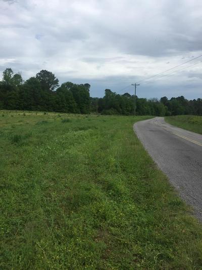 7.89 ACRES DENTVILLE RD, Delano, TN 37325 - Photo 1