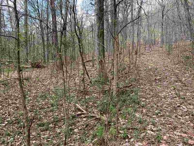 0 BACK VALLEY ROAD, Evensville, TN 37332 - Photo 2