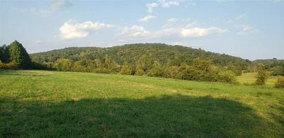 15 ACRES NO PONE ROAD NW, Georgetown, TN 37336 - Photo 2