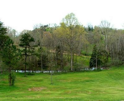 LOT 6 WAUTAUGA LANE, Birchwood, TN 37308 - Photo 1