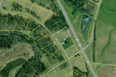 LOT 4 WAUTAUGA LANE, Birchwood, TN 37308 - Photo 1