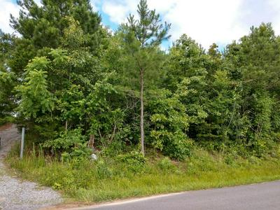 00 SW OLD ALABAMA ROAD, McDonald, TN 37353 - Photo 1