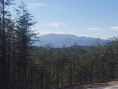 5 ACRES LITTLE MOUNTAIN, Copper Hill, TN 37326 - Photo 1