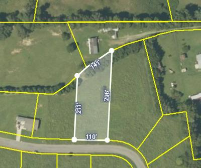 LOT 8 MEADOW LAWN DR, Englewood, TN 37329 - Photo 2