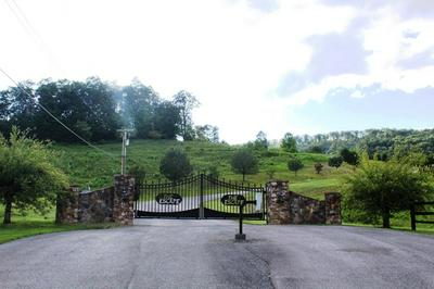 LOT 23 ESCAPE DRIVE, Evensville, TN 37332 - Photo 2