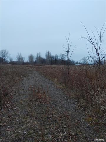 0 PLANK ROAD, Cottrellville Twp, MI 48039 - Photo 1