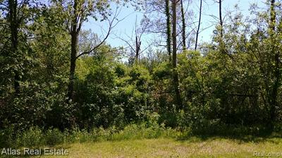 4671 CLEARWATER DR, Hadley Twp, MI 48440 - Photo 2