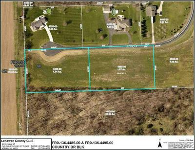 7000 BLK COUNTRY DR., FRANKLIN TWP, MI 49286 - Photo 2