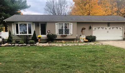 4801 HANOVER RD, HANOVER TWP, MI 49246 - Photo 2