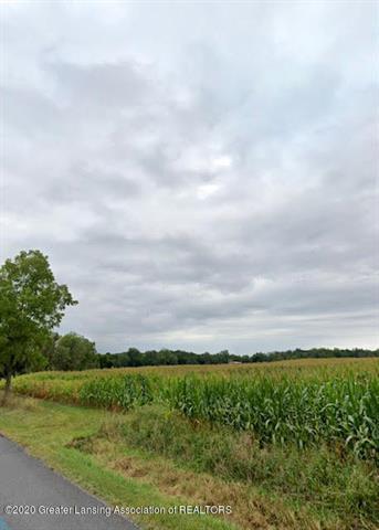 0 S SHOESMITH ROAD, Williamstown Township, MI 48840 - Photo 2