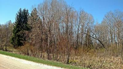 2.56 ACRES S TUTTLE ROAD, Custer Twp, MI 49405 - Photo 1