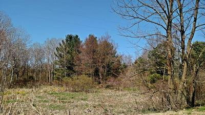 2.56 ACRES S TUTTLE ROAD, Custer Twp, MI 49405 - Photo 2