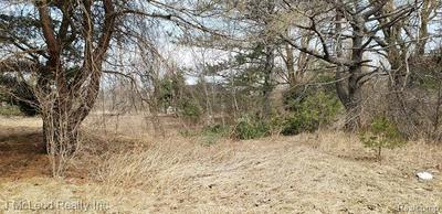 VACANT LAND SWAFFER & IRISH RD, Vassar Township, MI 48746 - Photo 2