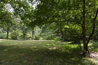 407 SOUTH RD, Cottontown, TN 37048 - Photo 1