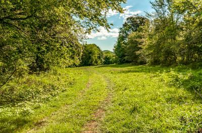 0 DRY CREEK RD E, Mount Pleasant, TN 38474 - Photo 2