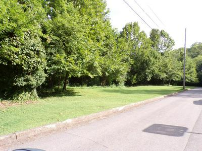 0 VALLEY VIEW DR W, Pulaski, TN 38478 - Photo 1