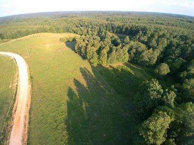 0 GRANNY SCOTT RD, Waynesboro, TN 38485 - Photo 1