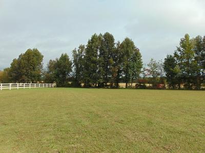104 EAGLE RIDGE RD, Summertown, TN 38483 - Photo 2