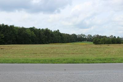 0 EUGENE REED RD, Woodbury, TN 37190 - Photo 2