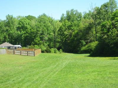 896 MERIDIANVILLE BOTTOM RD, Meridianville, AL 35759 - Photo 2