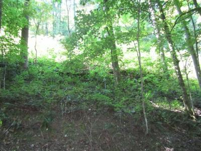 1 .17AC AUSTIN LAKE RD, Baxter, TN 38544 - Photo 1