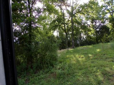 421 FORT HILL DR, Pulaski, TN 38478 - Photo 2