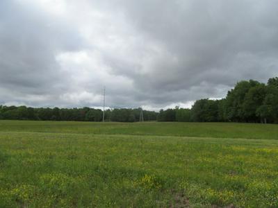 921 SUMMERTOWN HWY, Hohenwald, TN 38462 - Photo 2