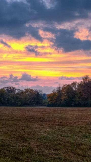 4 KNIGHT CREEK RD, Watertown, TN 37184 - Photo 1
