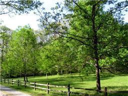 0 INGMAN FARM RD, Tracy City, TN 37387 - Photo 2
