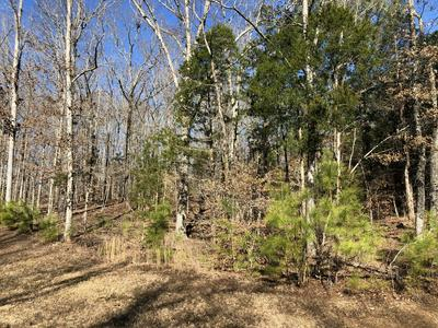 991 STRIKE KING DR, Cedar Grove, TN 38321 - Photo 1