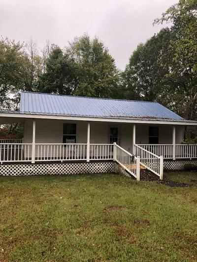 4111 HIGHWAY 43 N, Ethridge, TN 38456 - Photo 1