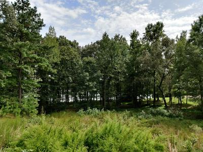16 THUNDERCRAW PT, Cedar Grove, TN 38321 - Photo 1