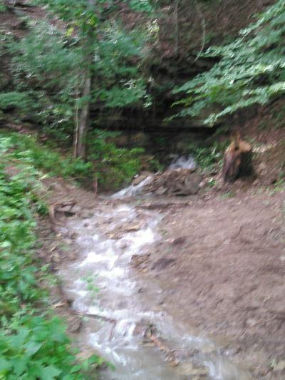 1370 RHEA BRANCH RD, Ethridge, TN 38456 - Photo 2
