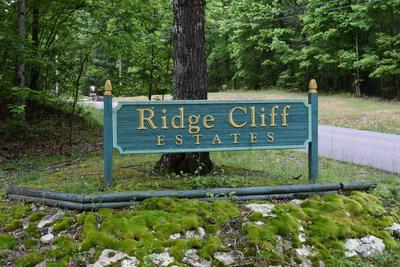 1683 RIDGE CLIFF DR, Monteagle, TN 37356 - Photo 1