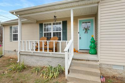 243 PARAGON DR, Bell Buckle, TN 37020 - Photo 2