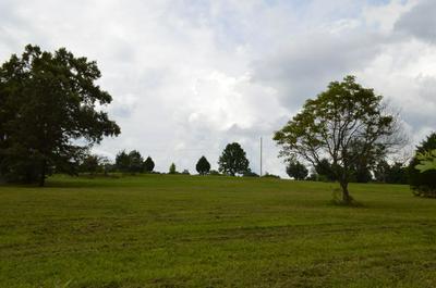 401 SOUTH RD, Cottontown, TN 37048 - Photo 2