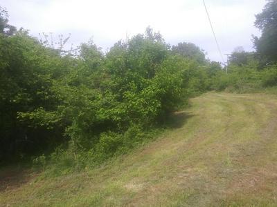 71 SULLIVAN BEND RD, ELMWOOD, TN 38560 - Photo 2