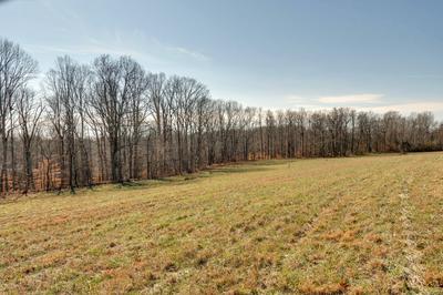 0 NEW LAWRENCEBURG HWY, Mount Pleasant, TN 38474 - Photo 1